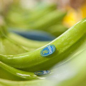 Δεν πάει χαμένη καμιά μπανάνα