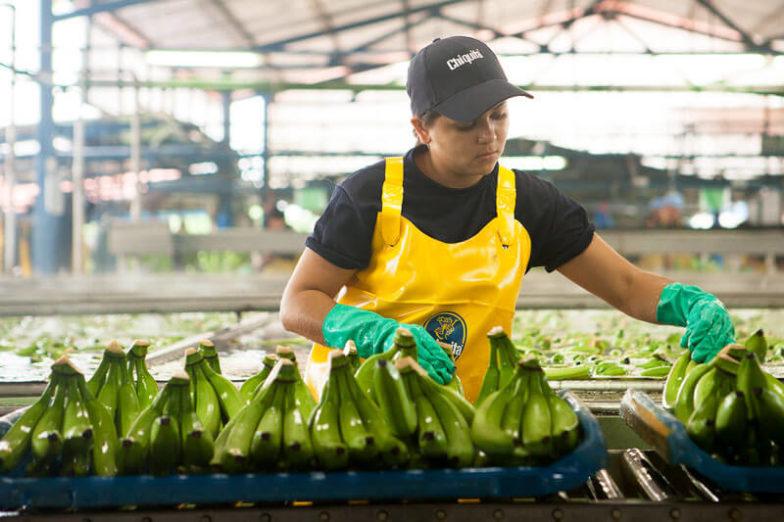 Η διαχείριση του υδάτινου αποτυπώματος στις φυτείες της Chiquita εξοικονομεί 1,8 δισεκατομμύρια λίτρα νερού κάθε χρόνο - 1