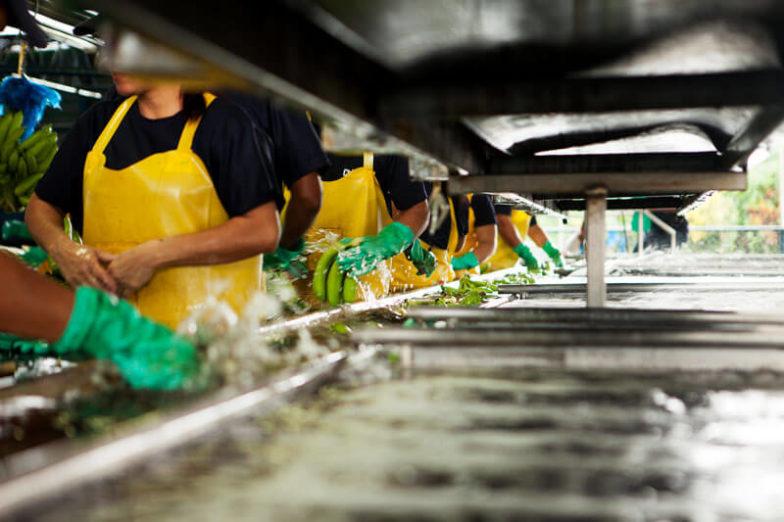 Η διαχείριση του υδάτινου αποτυπώματος στις φυτείες της Chiquita εξοικονομεί 1,8 δισεκατομμύρια λίτρα νερού κάθε χρόνο - 2