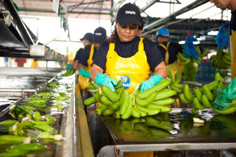 Η διαχείριση του υδάτινου αποτυπώματος στις φυτείες της Chiquita εξοικονομεί 1,8 δισεκατομμύρια λίτρα νερού κάθε χρόνο - 3