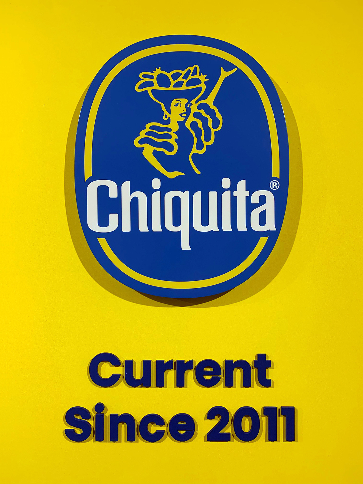 Our iconic Blue Sticker
