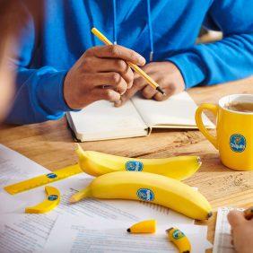 Ενθαρρυντικές συμβουλές για την εργασία από το σπίτι