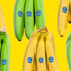 Τα υγιεινά σνακ έρχονται σε πράσινο, κίτρινο ή καφέ χρώμα!