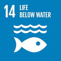 στόχος_14_ζωή στο νερό